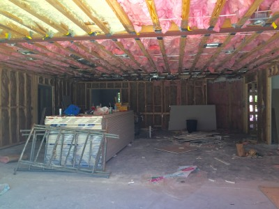 Insulation to be replaced and wood areas to be painted with Kilz to get rid of any more mold growth