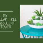 DIY Dollar Tree Succulent Tower