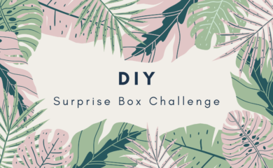 DIY Surprise Box Challenge