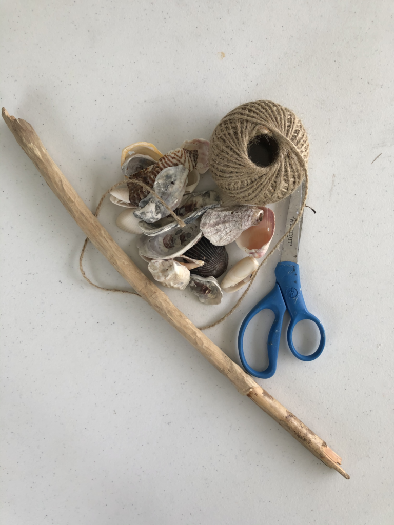 Materials Used for my Shell Wall Hanging